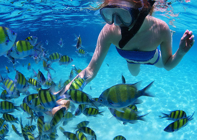 Carol snorkeling in Cozumel after an excellent bottom fishing trip with her party.